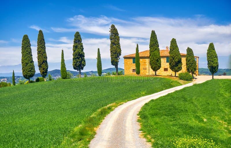 Het Landschap van Toscanië met Cipresbomen royalty-vrije stock foto's