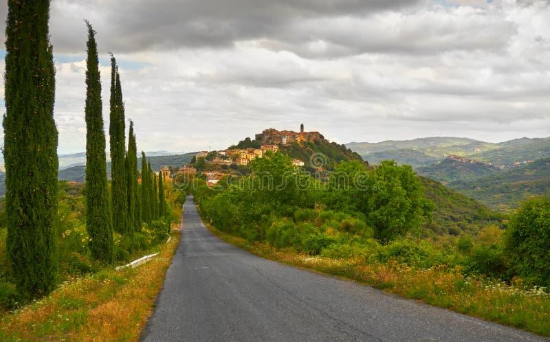 Het Landschap van Toscanië met Cipresbomen stock foto