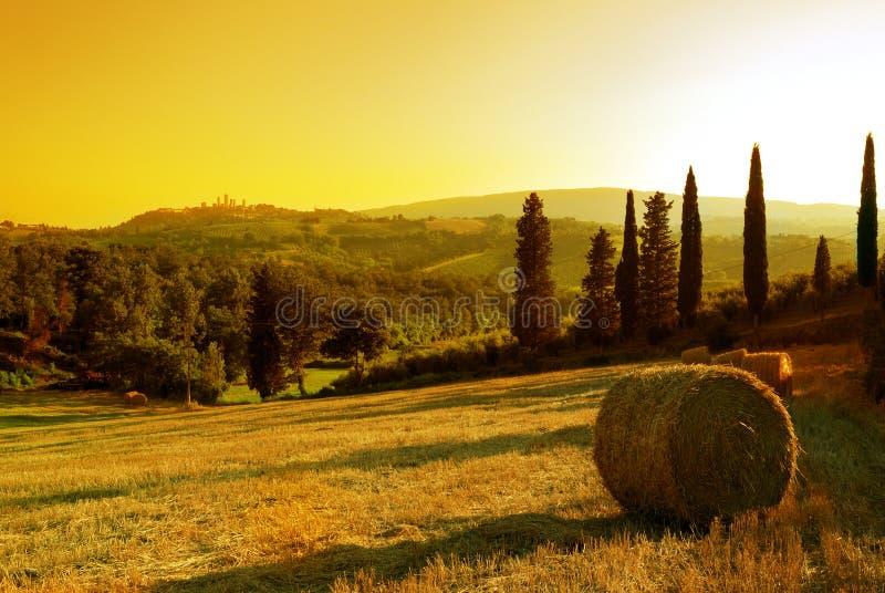 Het landschap van Toscanië van de zonsondergang stock fotografie