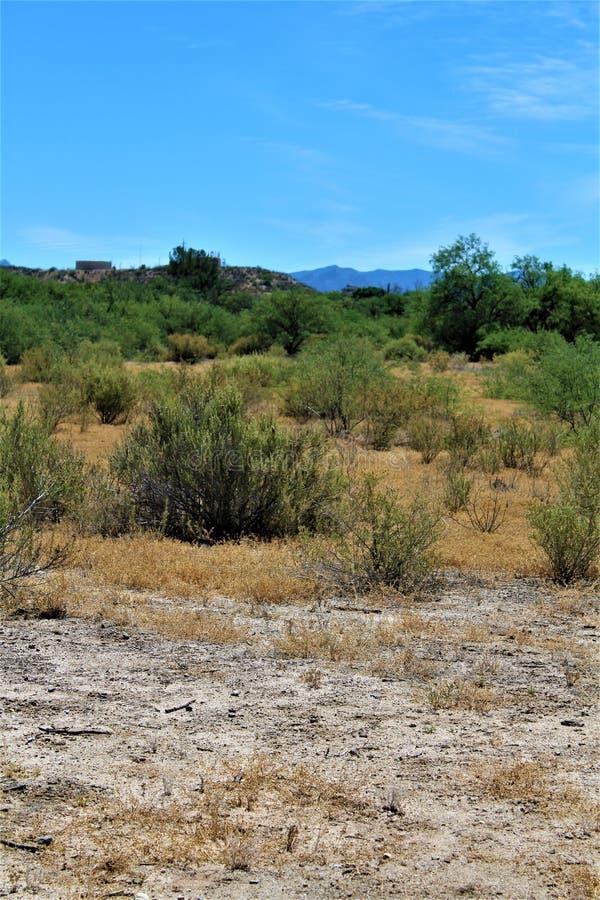 Het Landschap van het woestijnlandschap in Cochise-Provincie, Heilige David, Arizona wordt gevestigd dat stock foto's