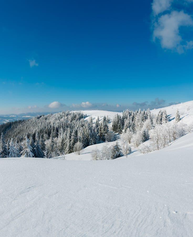 Het landschaps Karpatische Bergen van de de winter kalme berg, de Oekraïne stock foto