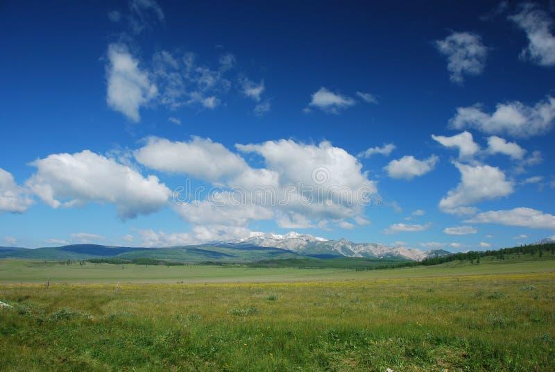 Het landschapsmening van de zomer stock afbeeldingen