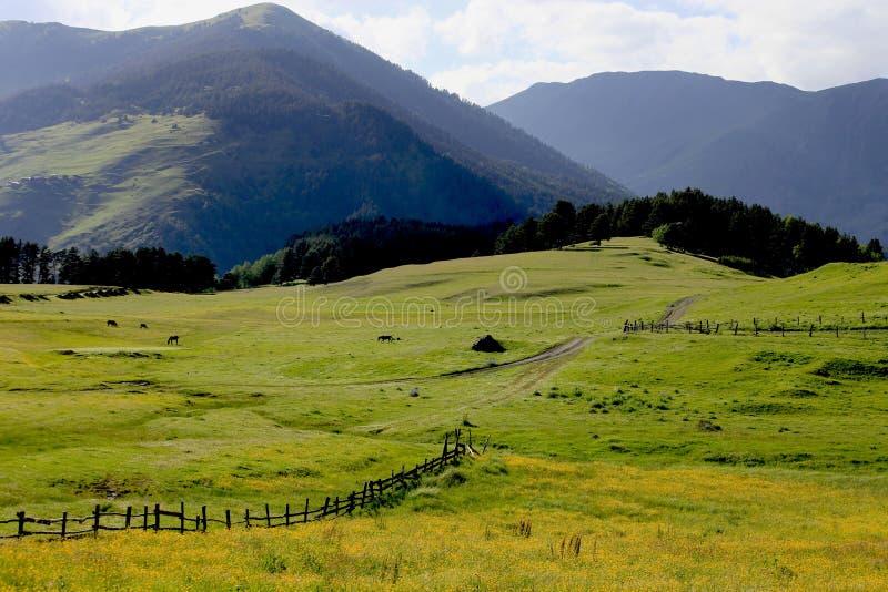 Het landschapspanorama van de berg, schoonheid van aard royalty-vrije stock foto's
