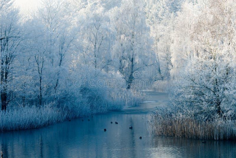 Het landschapsscène van de winter royalty-vrije stock fotografie