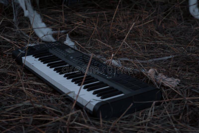 Het lazaruze en verlaten toetsenbord legt alleen op een gebied van stro, hooi, en afval royalty-vrije stock foto's