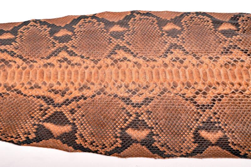 Het leer van de python royalty-vrije stock foto's