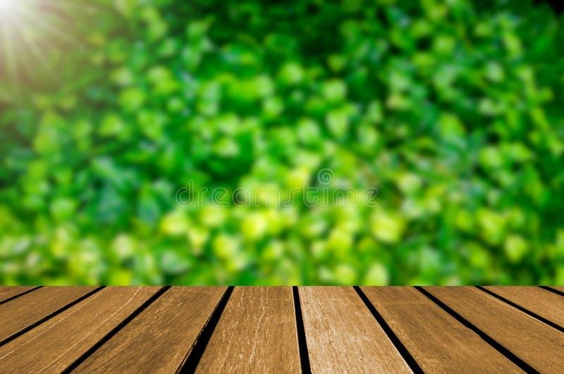Het lege houten groene blad van het lijstonduidelijke beeld stock foto