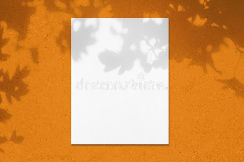 Het lege witte verticale model van de rechthoekaffiche met bladerenschaduwen royalty-vrije stock afbeelding