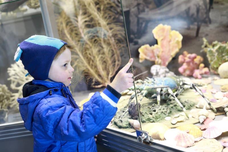Het letten op van het kind vissen stock fotografie