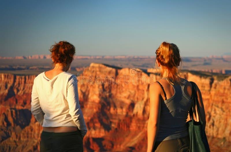 Het letten van op Grand Canyon stock afbeeldingen