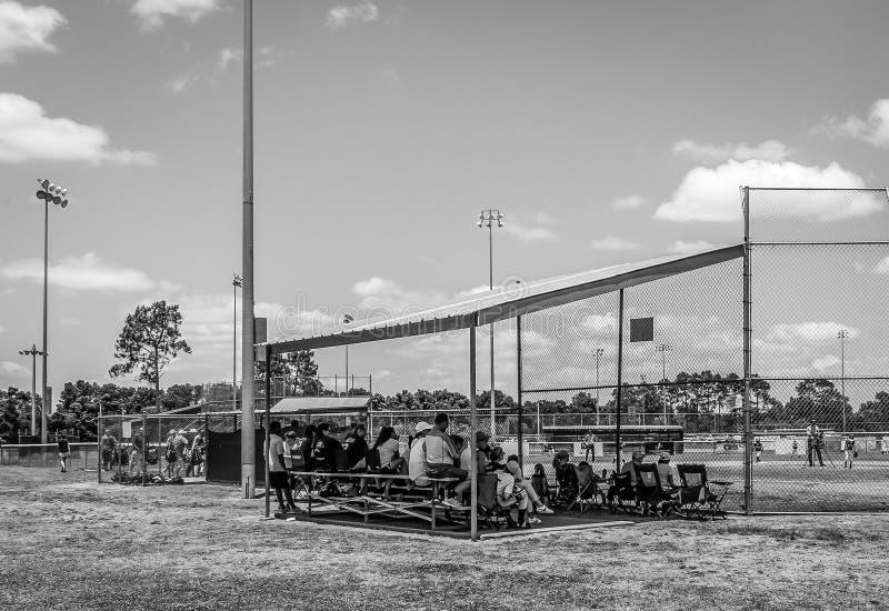 Het letten van het op Honkbalspel royalty-vrije stock fotografie