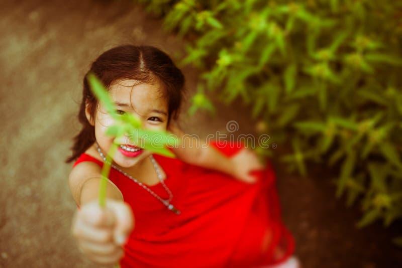 Het leuke Aziatische jong geitjemeisje die haar bloem geven aan u verwerkt in blauwe ton royalty-vrije stock afbeeldingen