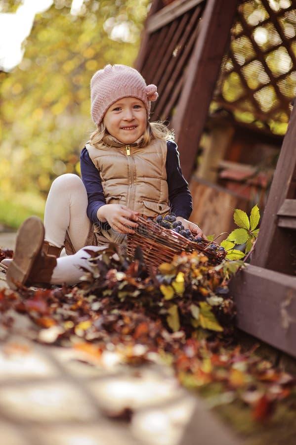 Het leuke gelukkige kindmeisje spelen met mand van druiven in zonnige de herfsttuin stock afbeeldingen