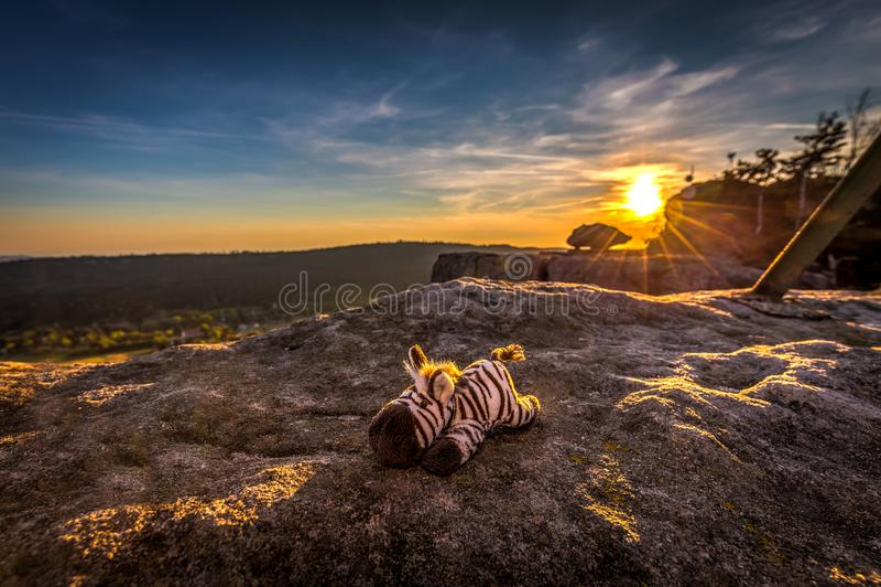 Het leuke gevulde stuk speelgoed gestreepte rusten in de gouden stralen van zonsondergang stock afbeeldingen
