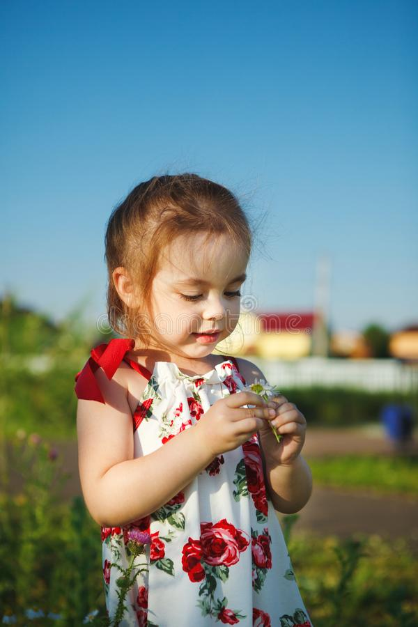 Het leuke meisje in de zomerkleding verzamelt wildflowers mooie kindgangen in aard royalty-vrije stock afbeeldingen