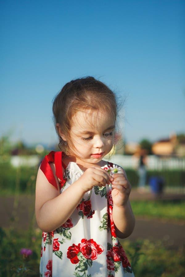 Het leuke meisje in de zomerkleding verzamelt wildflowers mooie kindgangen in aard stock foto