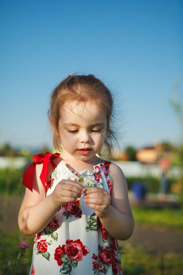 Het leuke meisje in de zomerkleding verzamelt wildflowers mooie kindgangen in aard stock afbeelding