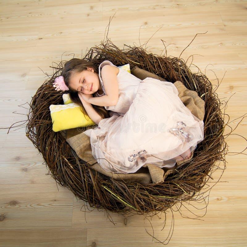 Het leuke meisje in een roze kleding en een roze kroon slaapt in een groot nest en ziet fabelachtige dromen royalty-vrije stock foto's
