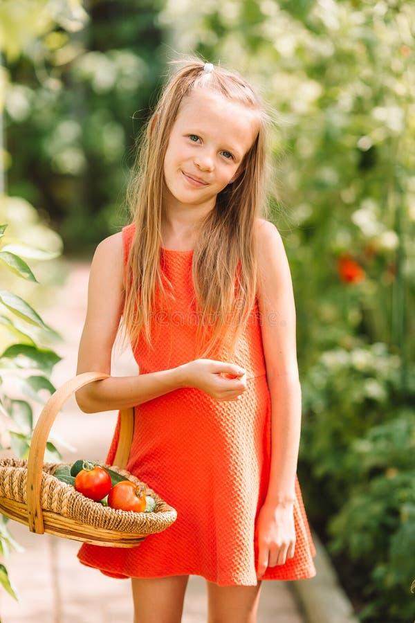 Het leuke meisje verzamelt gewassenkomkommers en tomaten in serre stock afbeelding