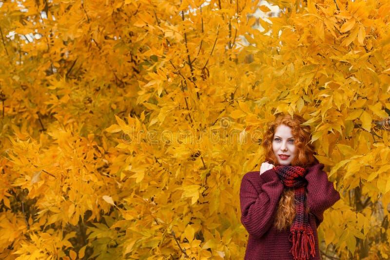 Het leuke roodharige meisje op de achtergrond van een de herfstboom met een blad in haar hand glimlacht en trekt grimassen stock foto's