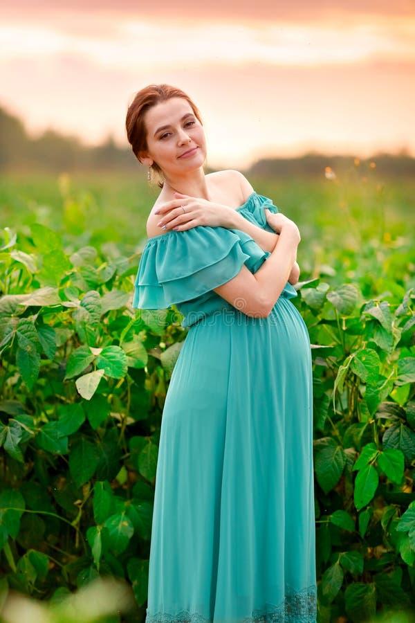 Het leuke zwangere meisje in een groene kleding bevindt zich op een gebied bij zonsondergang stock fotografie
