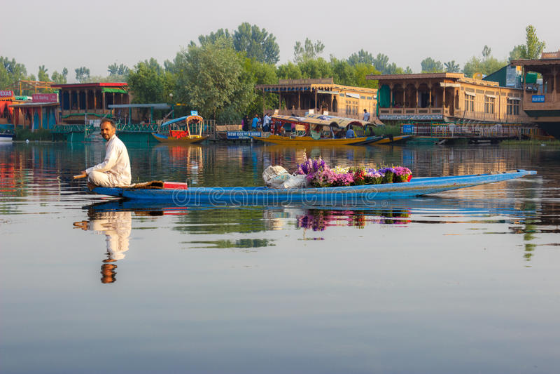 Het leven in Dal meer, Srinagar stock fotografie