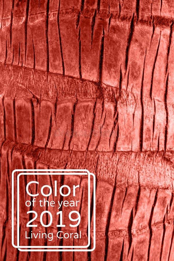 Het leven de tropische boomstam van de Koraalkleur van een achtergrond van de palmclose-up Kleur van het jaar 2019 stock foto
