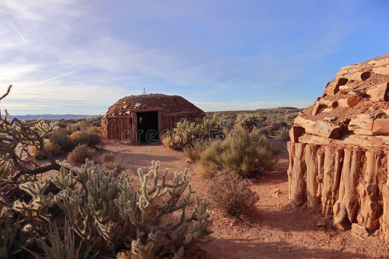 Het leven in de woestijn stock fotografie