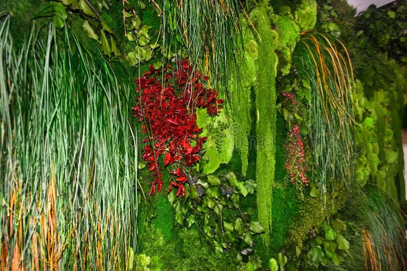 Het leven groene muur verticale tuin stock afbeelding