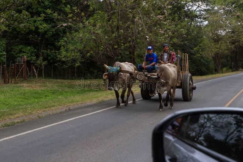 Het leven in Nicaragua royalty-vrije stock afbeelding