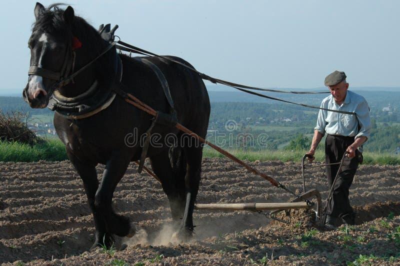 Het leven op Landbouwbedrijf 1 royalty-vrije stock foto's
