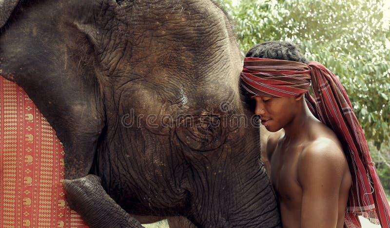 Het leven in plattelandssurin, Thailand royalty-vrije stock fotografie