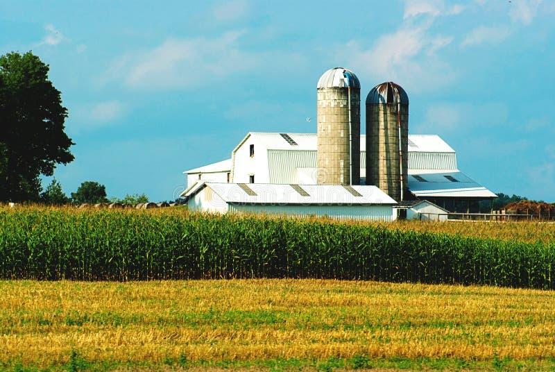 Het leven van het landbouwbedrijf royalty-vrije stock foto