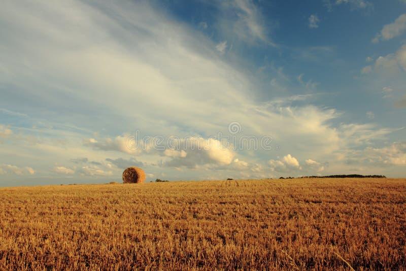 Het leven van het landbouwbedrijf royalty-vrije stock afbeelding