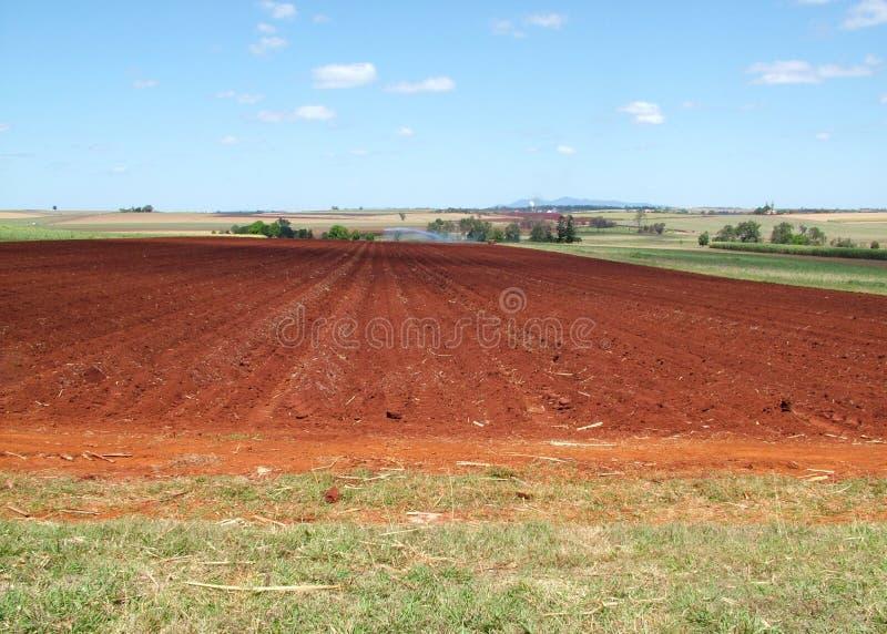 Download Het Leven Van Het Landbouwbedrijf Stock Foto - Afbeelding: 32674