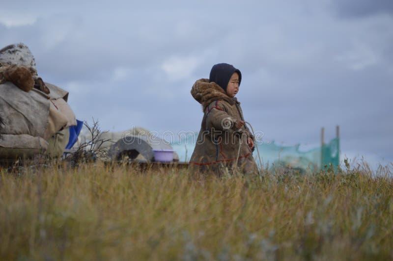 Het leven van rendierherders op het Yamal-Schiereiland stock afbeelding