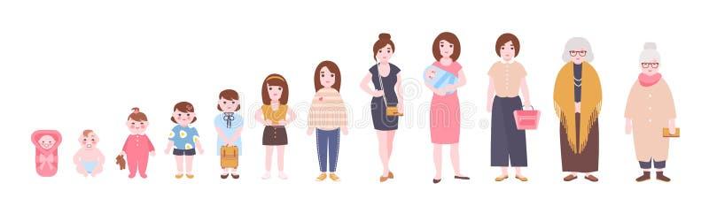 Het levenscyclus van vrouw Visualisatie van stadia van de vrouwelijke lichaam groei, ontwikkeling en verouderen, die oud proces k vector illustratie