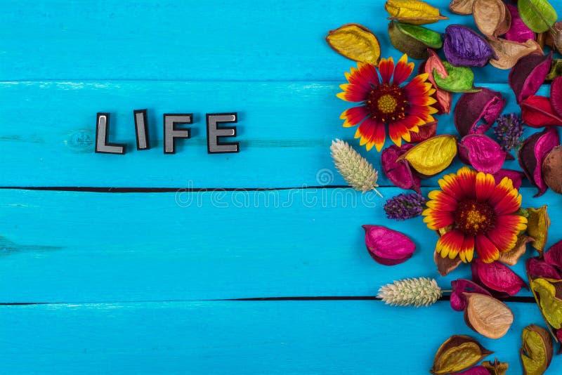 Het levenswoord op blauw hout met bloem stock afbeelding