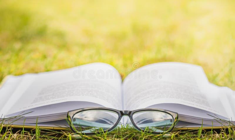 Het lezen in openlucht Openluchtrecreatie die een boek lezen stock afbeelding