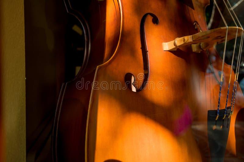 Het Lichaam van de celloviool royalty-vrije stock fotografie
