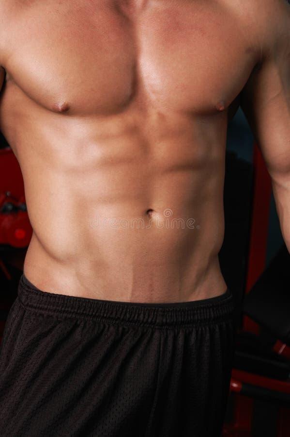 Het lichaam van de gymnastiek royalty-vrije stock foto
