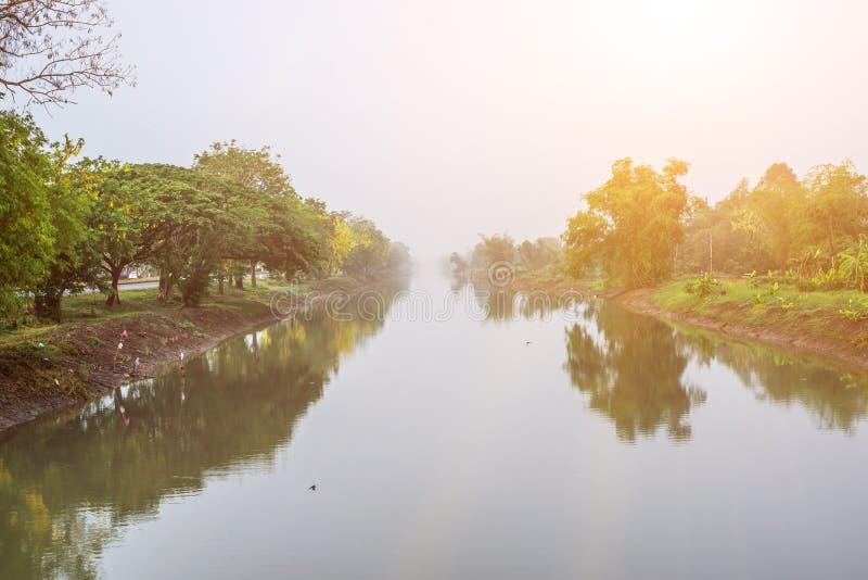 Het licht van de goedemorgentijd aan het leven stock foto