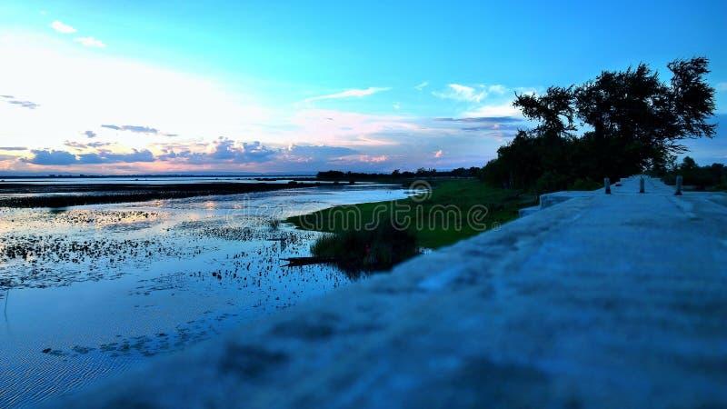 Het licht van het de bezinningsblad van de avondhemel van water was mooi stock foto's