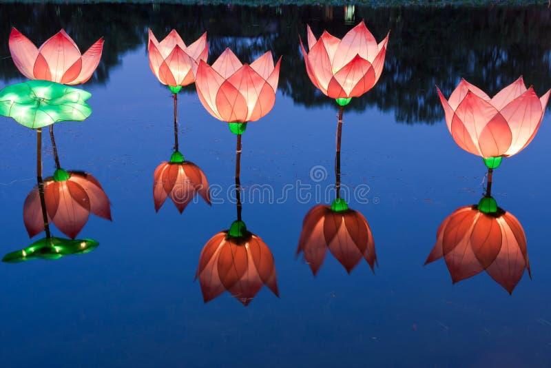 Het licht van Lotus in vijver royalty-vrije stock fotografie