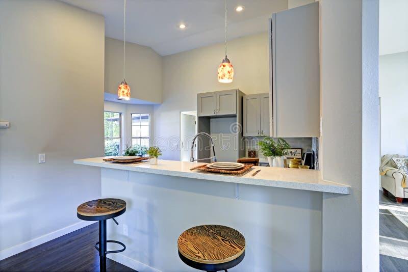 Download Het Lichtgrijze Binnenland Van De Keukenruimte Met De Keukeneiland Van De Barstijl Stock Foto - Afbeelding bestaande uit nieuw, vernieuwd: 107700968