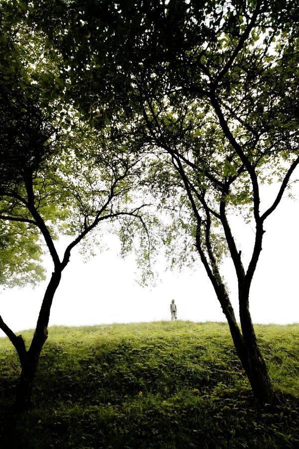 Het lied van de zomer op een heuvel stock foto