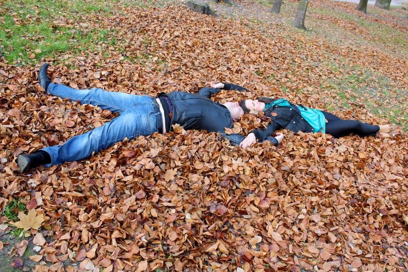 Het liggen op bladeren in het park stock foto's