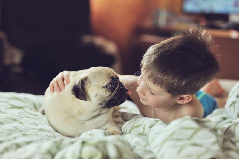 Jongen en pug stock fotografie
