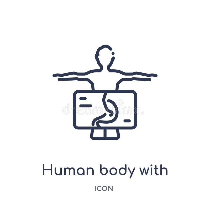 Het lineaire menselijke lichaam die met x ray plaat zich op maagpictogram concentreren van Menselijke lichaamsdelen schetst inzam stock illustratie