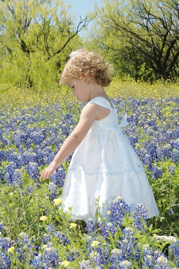 Het lopen in Bloemen stock fotografie